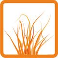 Трава, присыпки, поверхности